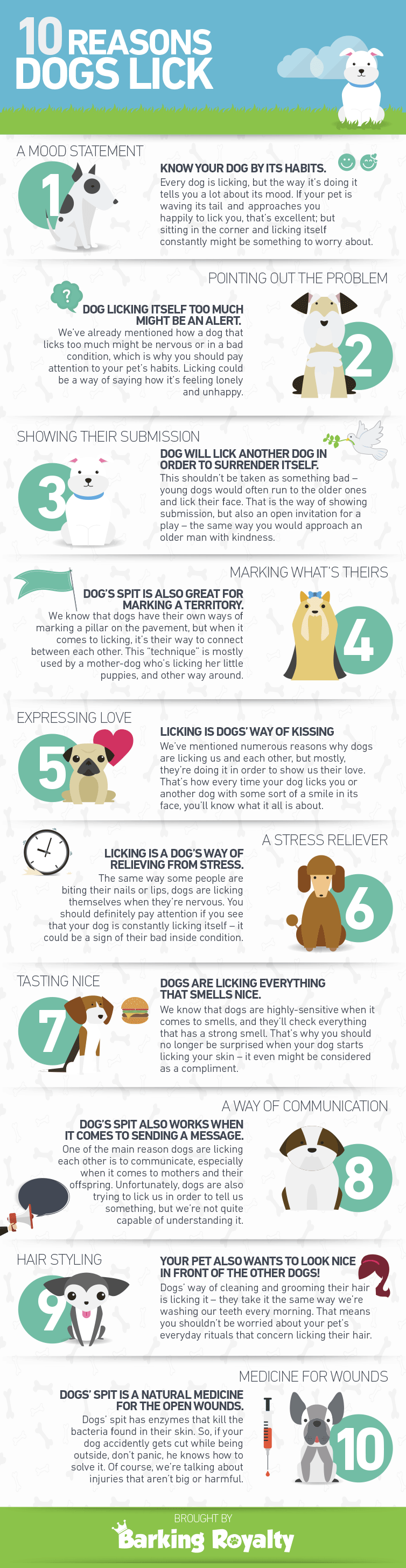 why do dogs lick infographic by barkingroyalty