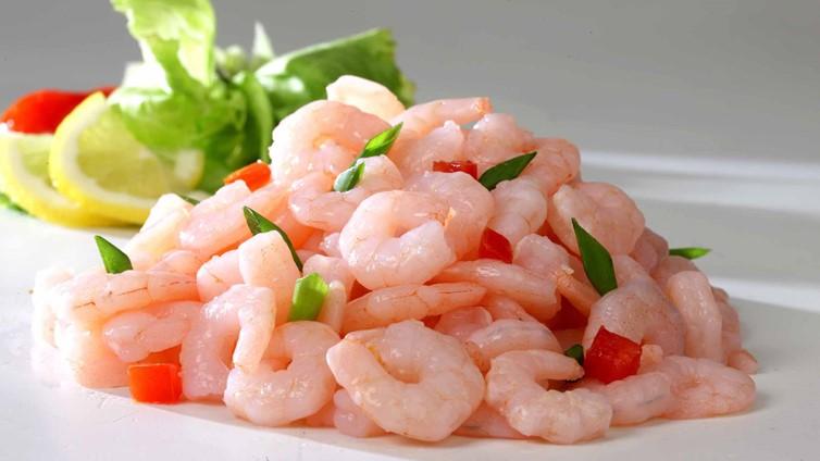 can dogs eat shrimps prawns