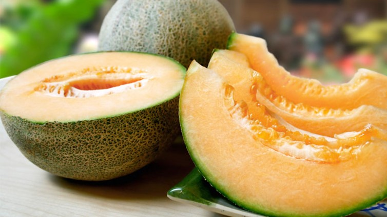 Can Dogs Eat Cantaloupe Barking Royalty Like most fruits, cantaloupe is highly nutritious. can dogs eat cantaloupe barking royalty