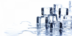 can dogs eat ice cubes