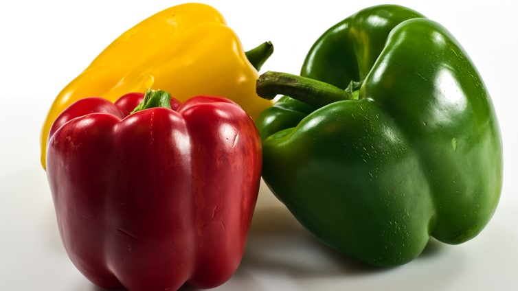 can dogs eat capsicum