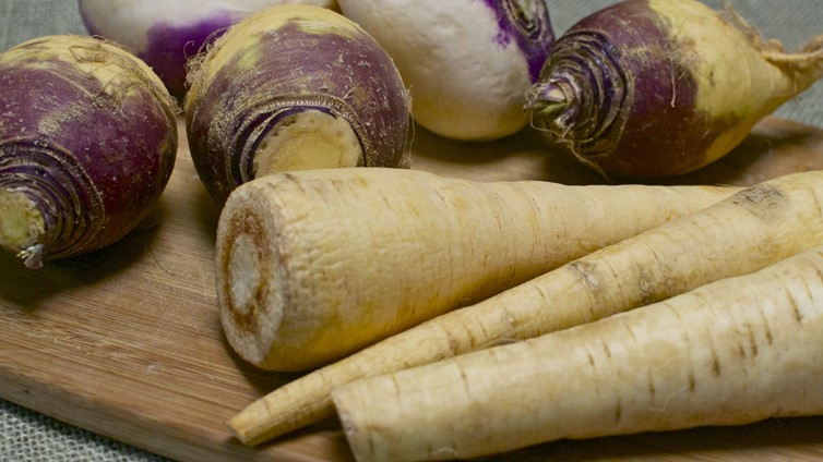 can dogs eat parsnips turnips