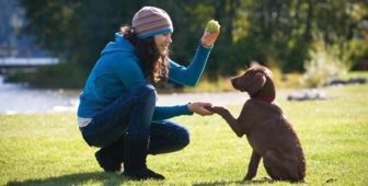 How To Train A Dog To Sit – Different Approaches & Tips