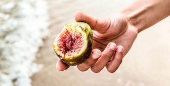 Can Dogs Eat Figs? What You Need To Know!