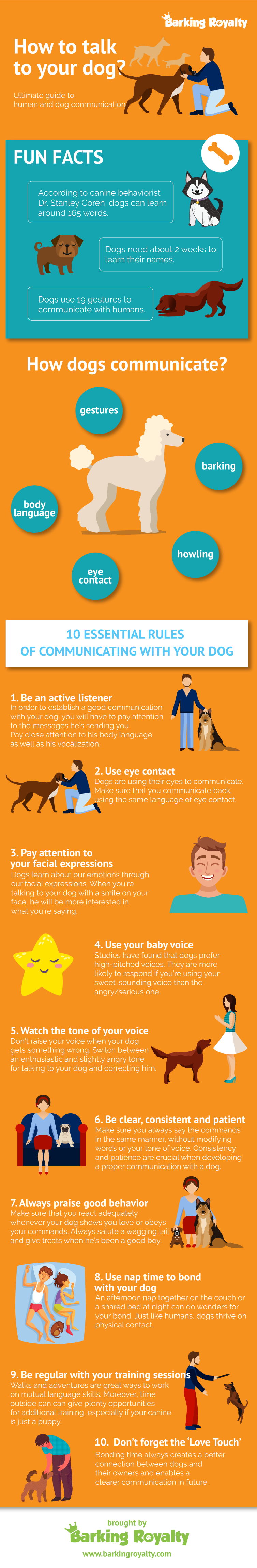 Dog And Human Communication – How To Talk To Your Dog Properly?