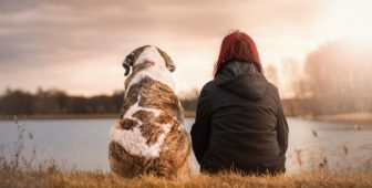 Owning A Dog Means Longer Life, Study Finds